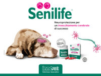 Senilife® (MB0013-01-2018)
