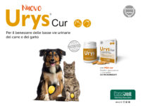 Urys® Cur (MB0203-03-2020)
