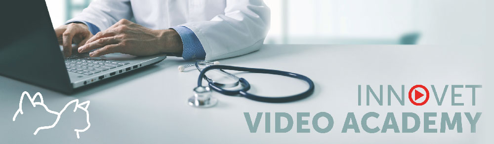 VideoAcademy Innovet