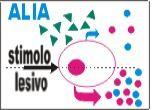 Nel controllo dei mastociti il futuro della terapia dermatologica