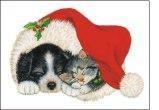 Natale: attenti al cane