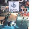"""BSAVA 2002: """"il nuovo che avanza"""" in tema di artrosi"""