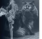 Fumo passivo: anche il gatto ne soffre