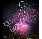 I botti di fine anno danneggiano i cani-guida