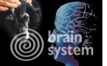 Nutraceutici per la mente