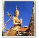 Lo WSAVA in Thailandia