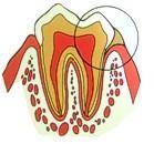 Serata di Odontoiatria a Desio