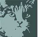 L'ABCD del gatto on line