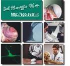Corso FAD sull'artrosi: on line la quarta lezione