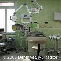 Dentalvet: lo studio dentistico approda in veterinaria