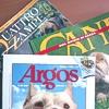 Malattie ortopediche del cane: informiamo il proprietario
