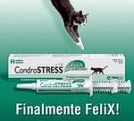 Condrostress® finalmente FeliX