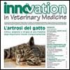L'artrosi del gatto