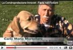 La condroprotezione Innovet su YouTube