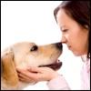 Alito da cani? Non sottovalutiamolo