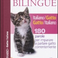 """Un dizionario per parlare """"gatto"""""""