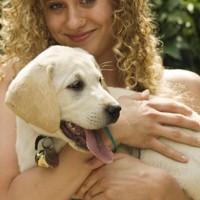 Cuccioli più sani con la nuova riproduzione selezionata