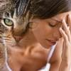 Cistite interstiziale: un marker comune tra gatto e donna