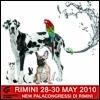 Rimini 2010: le anticipazioni