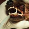 Ascophyllum per l'alito: nuovi dati clinici all'europeo di dentistica