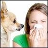Allergie a confronto