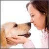 Alitosi al congresso europeo di dentistica veterinaria