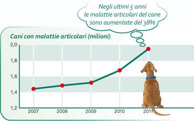 grafico_malattie-articolari