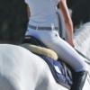 Innovet pensa alla salute del cavallo