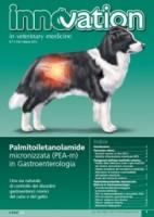 Palmitoiletanolamide micronizzata in Gastroenterologia