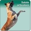 La salute articolare del cane è online