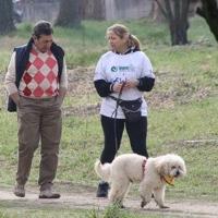 A passeggio con il cane: rischi e precauzioni