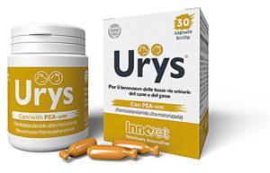 Assistenza clienti innovet for Urys gatto