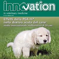 PEA nella diarrea acuta del cane: un nuovo studio sul campo