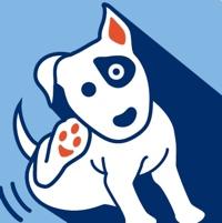 Si chiama Itchology®  l'app per cani con prurito