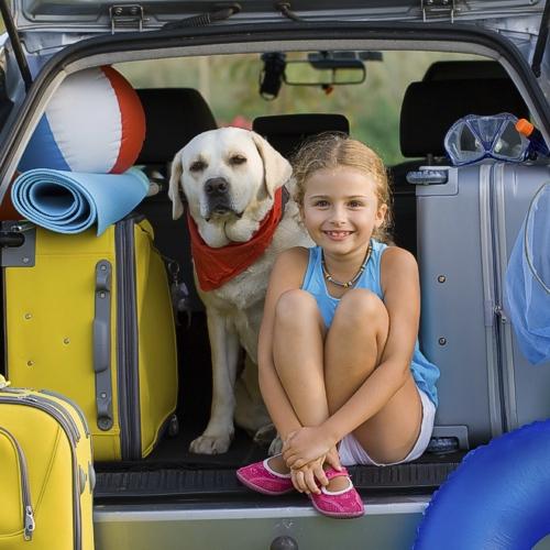 Cosa mettere nella valigia di fido in vacanza