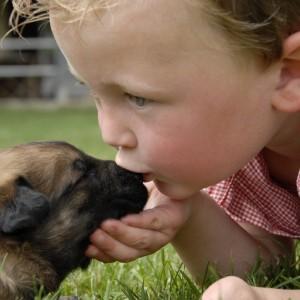 Bambino bacia cucciolo