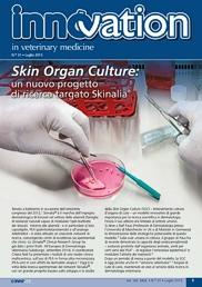 Skin Organ Culture (SOC): un nuovo progetto di ricerca targato Skinalia®