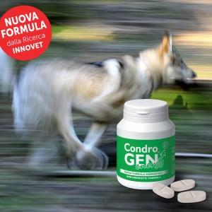 Condrogen® Energy, un pieno di energia per la salute articolare