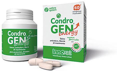 Condrogen® Energy