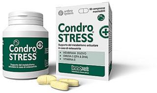 Condrostress® (+)