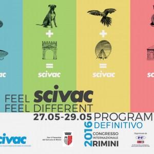 Eccoci a Rimini!