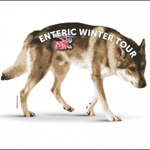 Enteric Winter Tour: un ciclo di serate sulla diarrea del cane