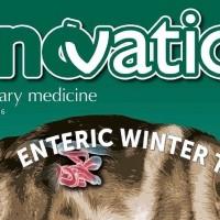 Uno speciale di InnVetMed dedicato alla diarrea