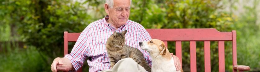 Anziani amici di cani e gatti