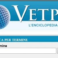 La PEA è su Vetpedia