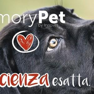 MemoryPet per aiutare cani e gatti abbandonati