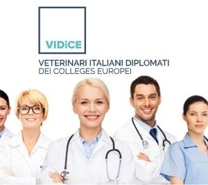 Nasce l'associazione degli specialisti veterinari