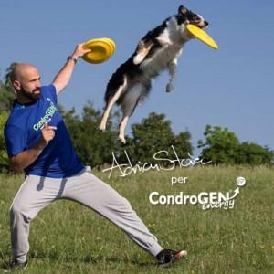 La salute articolare nei cani da Disc Dog