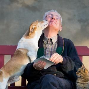 Senior e animali domestici: un rapporto d'amore
