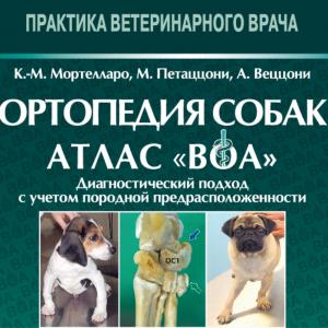 L'Atlante BOA® sbarca in Russia